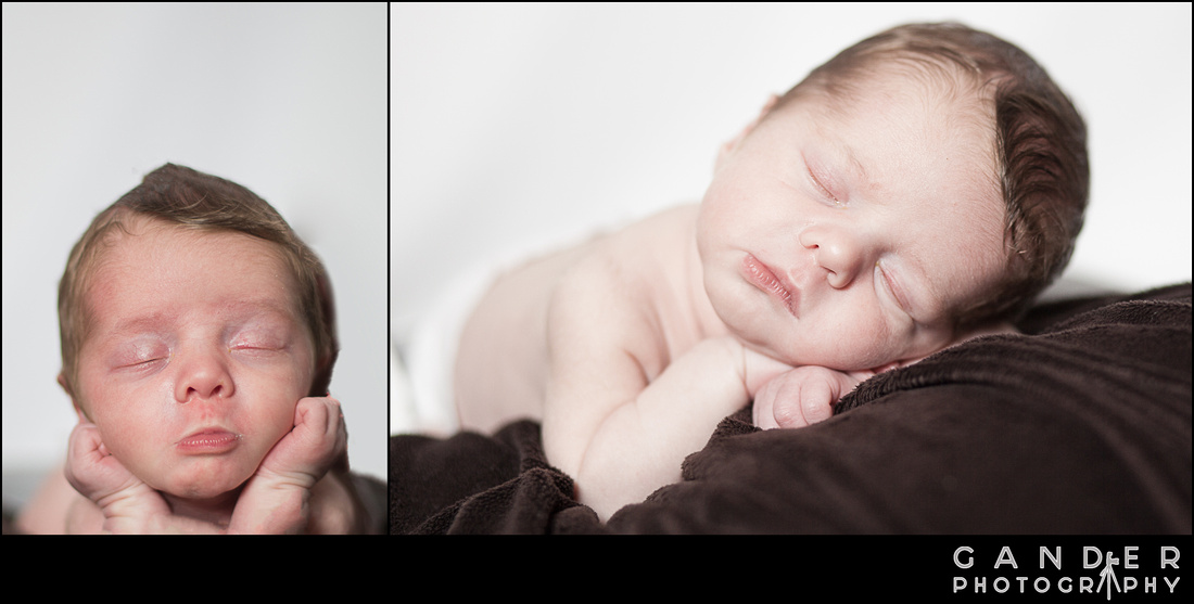 New Born baby Gander Photography