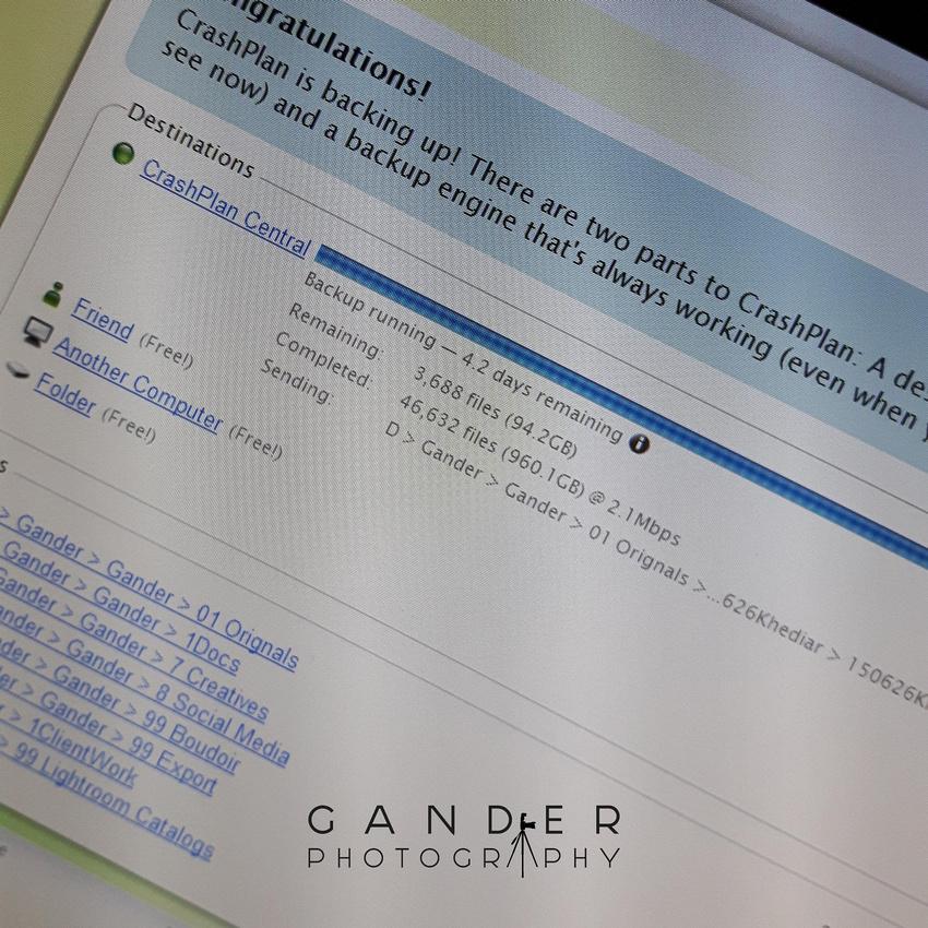 Gander Phototgaphy Backups