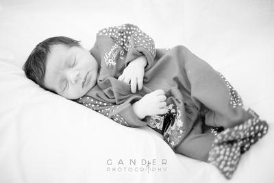 Gander Photography New Born