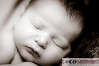 Gander Photography Maternity Baby