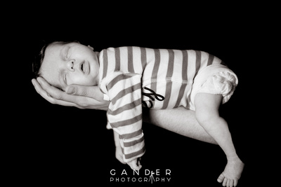 Gander Photography New Born