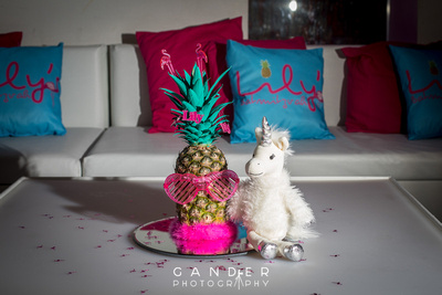 Pineapple Flamingo Unicorn